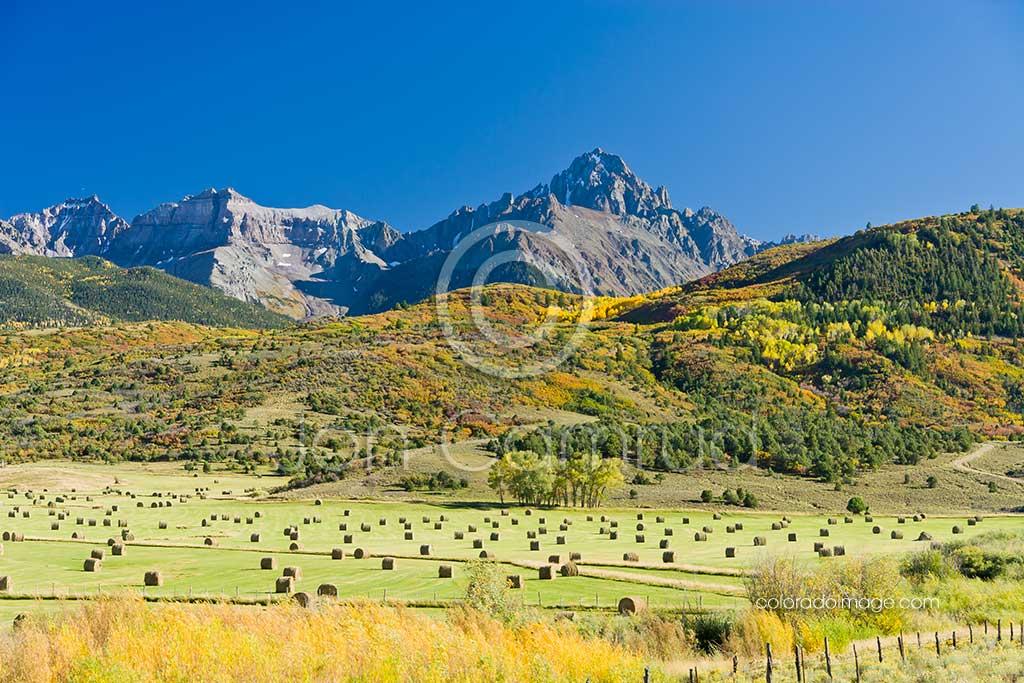 Mt. Sneffels hayfield in fall photo